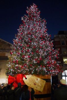 The Covent Garden Christmas Tree. Discover more Christmas trees, lights and decorations at visitlondon.com: http://ow.ly/UzrIz