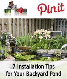 7 Installation Tips for Your Backyard Pond