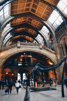 Natural History Museum London, England 2014 Wonderful place, absolutely loved it!