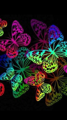 By Artist Unknown. Butterfly Drawing, Butterfly Pictures, Butterfly Painting, Butterfly Wallpaper, Love Wallpaper, Colorful Wallpaper, Wallpaper Backgrounds, Rainbow Butterfly, Butterfly Flowers