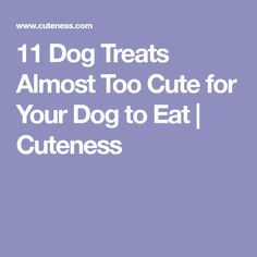 11 Dog Treats Almost Too Cute for Your Dog to Eat | Cuteness