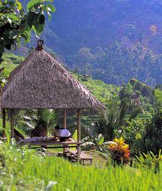 Hermoso Paraiso // So peaceful: Bali