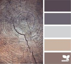 Office color palate