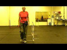(7) Foundation Skills - 2x2 Weave Pole Training (Part 1/3) - YouTube