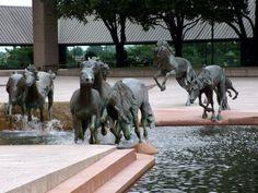 """Mustangs of Las Colinas"""