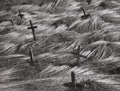 Martin Martinček - Na starom cintoríne But Is It Art, 4 Images, Old Cemeteries, Martini, Folk Art, Grass, Old Things, Black And White, Photography
