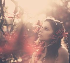 In-the-Red-Forest-Anna-Theodora.png 600×545 pixels