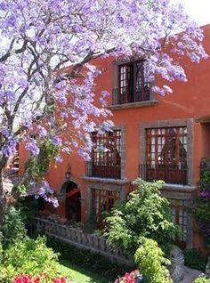 Casa Schuck Bed and Breakfast (San Miguel de Allende, México) : Reservá Hoteles en San Miguel de Allende, México : Hoteles en Pilar: Hotel Verano en San Miguel de Allende, México - Hoteles.com