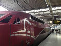Thalys train engine Thalys Train, Trains, Speed Training, Train Engines, Train Journey, High Speed, Cologne, Amsterdam, Engineering