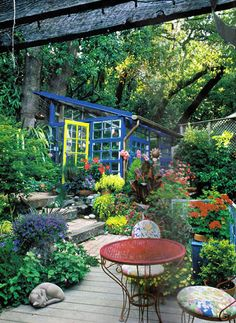 Playhouse/greenhouse done colorfully?  Looks great.  Love the wide steps and the lushness of the foliage.
