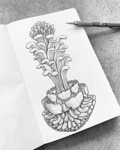 Sketching bizarre natural growy things to try out some new textures // #ink // #pencil // #sketch // #doodle // #shrooms // #fungus // #mushrooms // #trippy // #psychedelic // #botanical // #floral // #flowers // #moleskine // #drawing // #artbook //