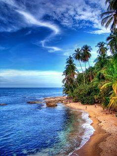Refugio Nacional Manzanillo--Costa Rica national park. Beach. Island. Ocean. Caribbean.