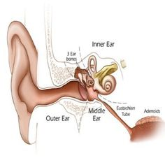 Best Home Remedies For Ear Congestion