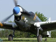 Curtiss P40N Warhawk F-AZKU. Based at La Ferté Alais, France.