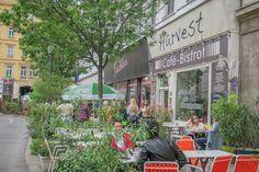 Sehenswürdigkeiten Wien Stadttour Leopoldstadt Restaurant Bar, Austria, Restaurants, Traveling, Wanderlust, Nightlife, Old Town, Travel Inspiration, Destinations