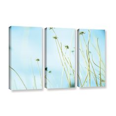 30 Second Daydream by Mark Ross 3 Piece Photographic print on Gallery Wrapped Canvas Set