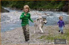 www.dogwalktrail.com zomer vakantie met de kinderen en hond Zell Am See, Husky, Dogs, Animals, Kaprun, Animales, Animaux, Pet Dogs, Doggies