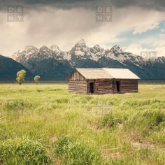 Catherine McDonald Summer In The Tetons Shower Curtain