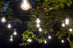 I want these lights in my garden, they look so cute! <3