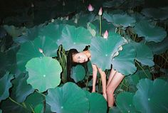 Ren Hang Chinese b 1987 Chang Chun Jilin province Poses, Film Photography, Fashion Photography, Ren Hang, Alphonse Mucha, Wow Art, Art Graphique, Back To Nature, Digital Painting Tutorials