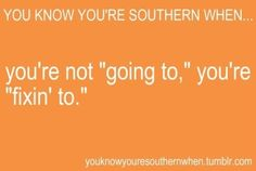My parents think this is SO funny! Southern Humor, Southern Ladies, Southern Sayings, Southern Pride, Southern Comfort, Southern Charm, Southern Belle, Simply Southern, Southern Living