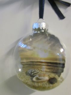 Pictures form the beach on paper and other beachy things in a glass ornament!