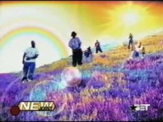 D12 - Purple Pills