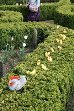 Easter chicks.