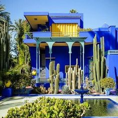 """Have you been in The Jardin Majorelle? It is one of the most visited sites in Morocco.  It took French painter Jacques Majorelle forty years of passion and dedication to create this enchanting garden in the heart of the """"Ochre City"""".  ⤵If you are an Entrepreneur please take a look to my previous post"""