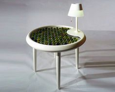 Biophotovoltaic Moss Table Generates Electricity Through Photosynthesis