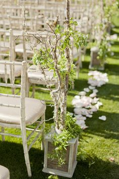 White Washed Chiavari Chairs with Elegant Seat Cushions. Shabby Chic Branchs / Trees in Planters. Love this for Aisle Decor -   See more on SMP: http://www.StyleMePretty.com/2012/10/24/backyard-phoenix-wedding-from-some-like-it-classic/ Photography: ElyseHall.com -- Event Design: SomeLikeItClassic.com --  Floral Design: TabletopsEtc.net