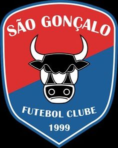 São Gonçalo F.C. Team Player, Football Team, Soccer, Sports Logos, Badges, Culture, Sports Clubs, World, Kite