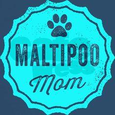 Maltipoo Mom T-Shirt #maltipoo #multipoo #cute