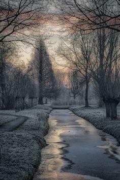 """Dreamy Winter"" -"