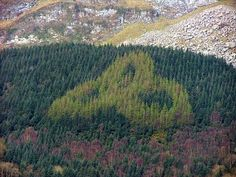 Inspired by ancient Irish designs, Jim McCabe and his family planted this sylvan Trinity Knot in the 1980s. It is located on the slopes of Tomór mountain and can be seen from the nearby N16 Sligo to Manorhamilton road. The design is best viewed in the autumn when the Japanese Larch trees change colour and contrast with the surrounding Sitka Spruce forest.