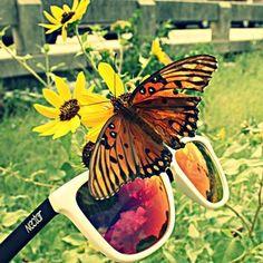 da8e9aadc5 nectar sunglasses Ray Ban Sunglasses Sale