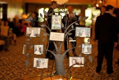 """We had a """"Family Tree"""" with wedding photos from our parents and grandparents. It was great because it shows all our generations when we were about the same age. (Photos by Foto Bella Photography 2012)"""