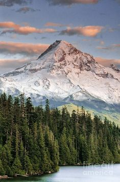Mt. Hood, Oregon | Fine Art America