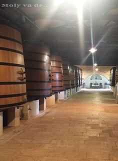 Tres generaciones de mujeres muy particulares. 3ª parada, #ChâteauLeovilleBarton Commanderie de Madrid de los vinos de #Burdeos #Molyvade...#viaje #GranConseildesVinsdeBordeaux molyvade.blogspot.com