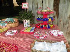 Festa Tema Pic Nic, Vicente 2 anos, mesa principal, com doces e guloseimas. Fotos Daniele Rangel Nunes.