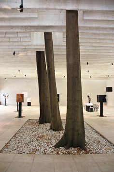 The Nordic pavillion at the Venice Biennale finished in 1962 Nordic Design, Urban Design, Sweden, Venice Biennale, Design Museum, Architecture, Finland, Norway, Trees