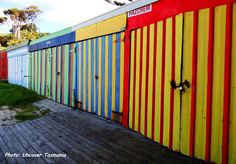Colourful sheds at the Surf Club Boat Harbour Beach.