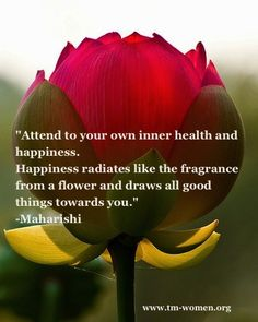 Attend to your own inner health and happiness - Maharishi Art Quotes Funny, Words Quotes, Wise Words, Tupac Quotes, Sayings, Spiritual Inspiration, Yoga Inspiration, Maharishi Mahesh Yogi, Inspirational Words Of Wisdom