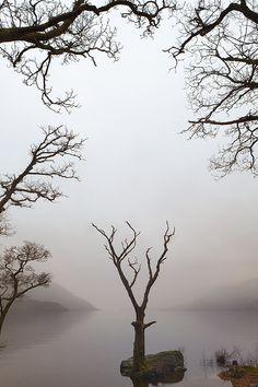 loch lomond tree poem