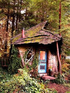 old cabin at Camp Joy, an organic farm in the Santa Cruz Mountains of California; photo by Flickr user reikopm
