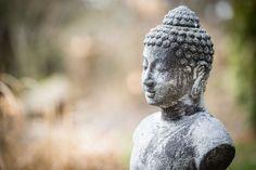 #art #asia #buddha #buddhism #fig #sculpture #statue #stone #stone figure #symbol