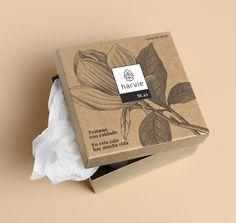 Packaging delivery flores, floristería y plantas. Craft Packaging, Tea Packaging, Food Packaging Design, Packaging Design Inspiration, Jewelry Packaging, Packaging Boxes, Luxury Packaging, Custom Packaging, Web Design