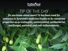 Health Tip of the Day - Neem oil may help itchy winter skin!