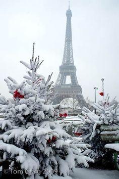 Winter Eiffel Tower, Paris https://www.pinterest.com/halinalis/breathtaking-view/