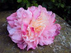 PINCE CLIP CHEVEUX BARRETTE fleur artificielle PIVOINE rose